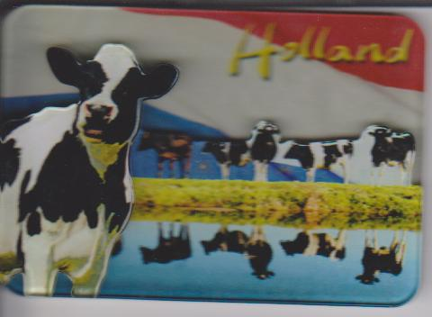 Magneten || Holland - Koeien