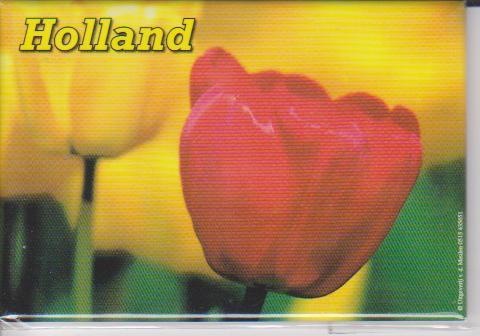 Magneten || Holland - Tulpen