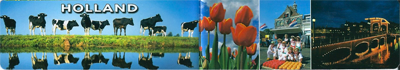 Magnetische boekenlegger    holland koeien