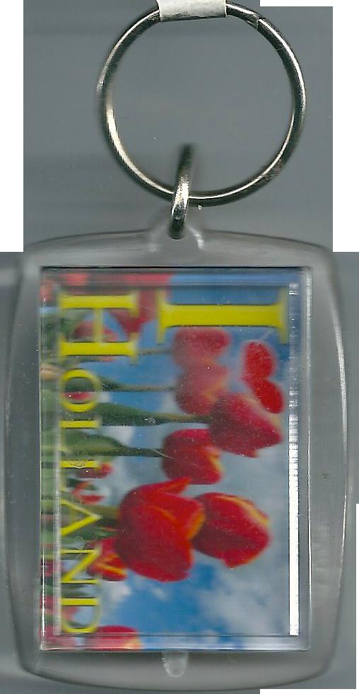 Sleutelhanger || Vierkant - Tulpen